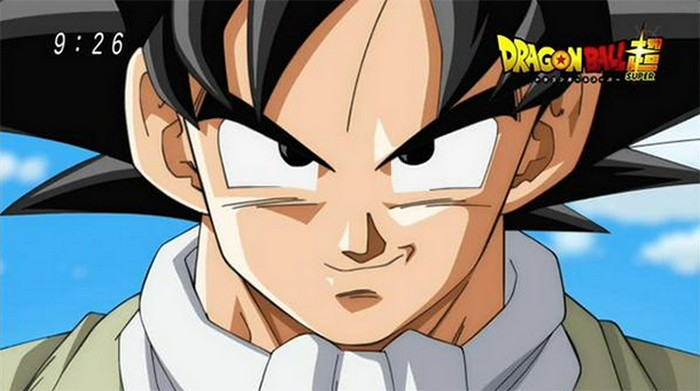 Dragonball Super Pause